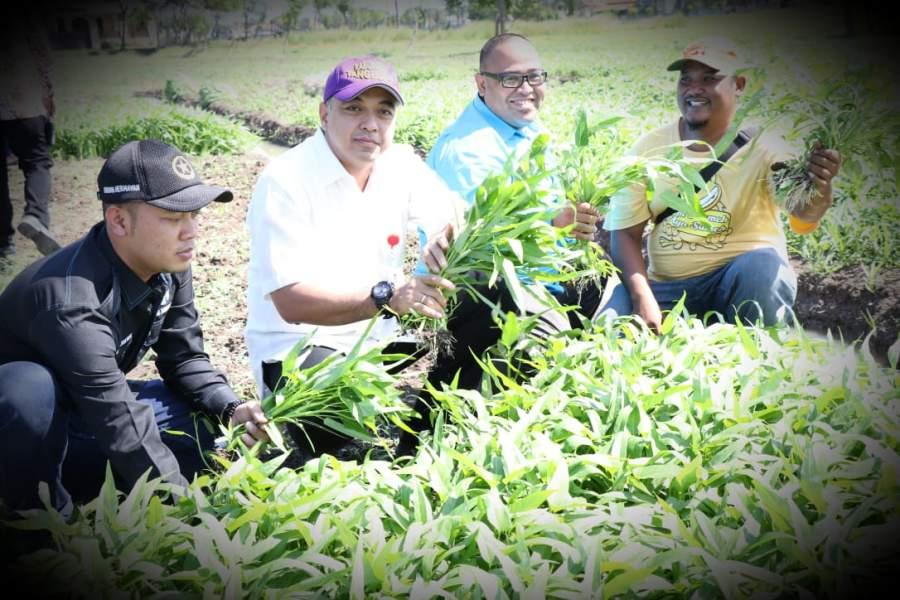 Bupati Zaki Tinjau Petani Sukses Asal Teluknaga
